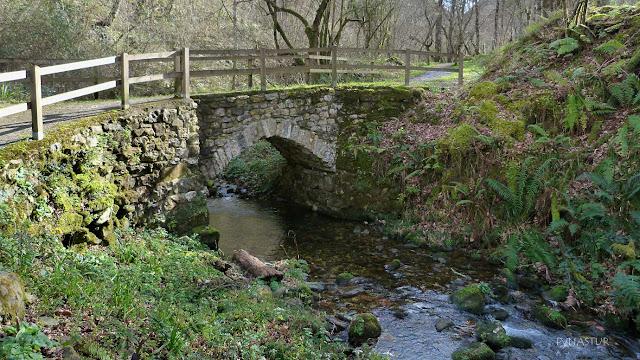Puente sobre el Río Pequeño o de La Cueva - Villamayor - Asturias