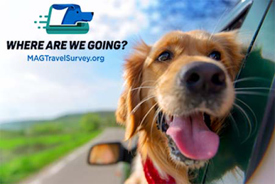 Image of a dog hanging out of car window.  Text: Where are we going?  MAGTravelSurvey.org