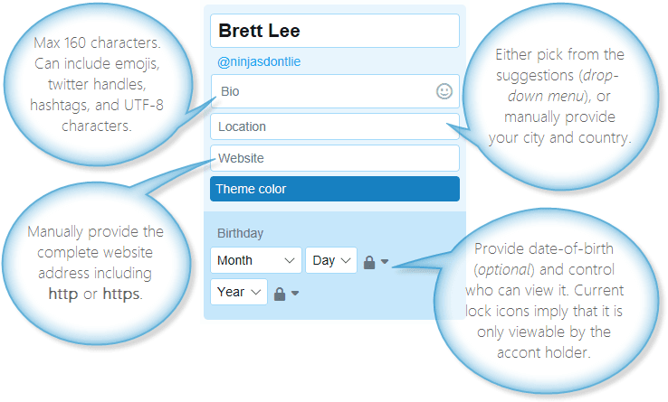 Twitter profile fields