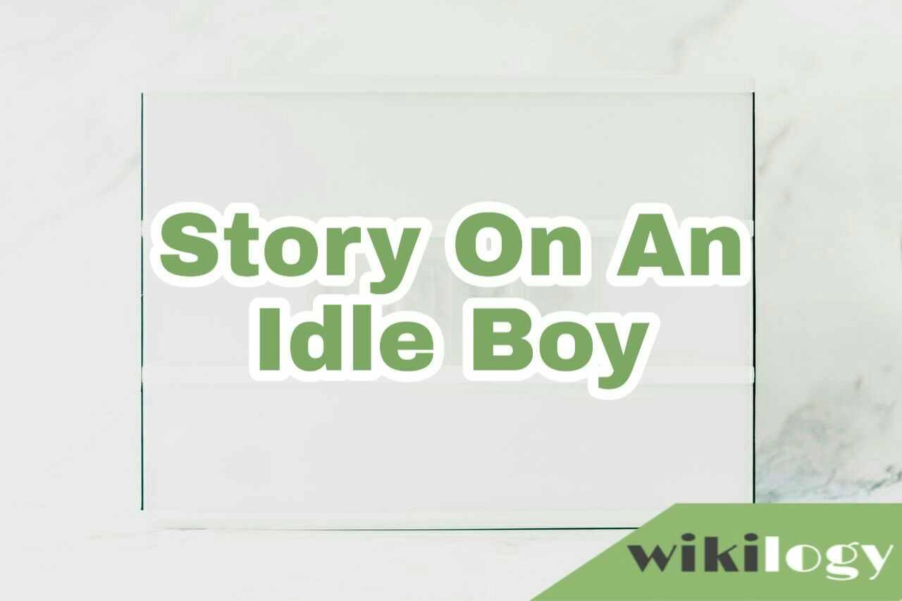 A Idle Boy Story