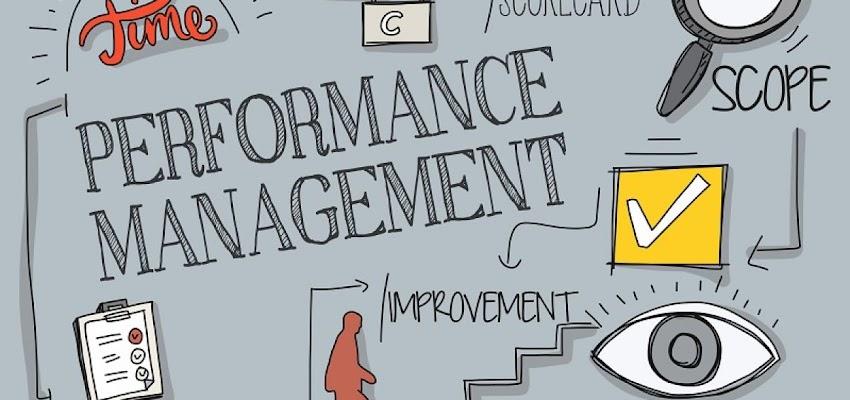 Appraisals & feedback
