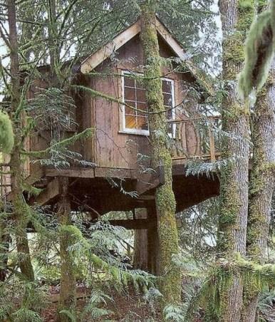 La casita del arbol for Hotel con casas colgadas de los arboles