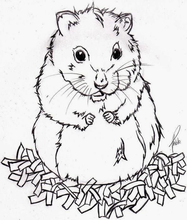 Fantástico Humphrey The Hamster Para Colorear Bosquejo - Ideas Para ...