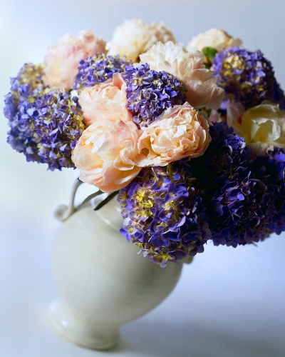 vase blanc avec des fleurs