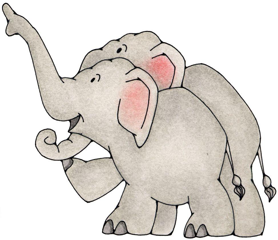 elefantes imágenes