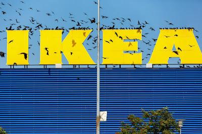 Kelebihan Membeli Produk Meja Makan Kayu di Ikea