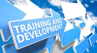 Dasar, Tujuan, dan Benefit Pelatihan dan Pengembangan SDM_