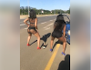 Confusion As Ladies Park Their Vehicle, Twerk By The Roadside (Video) || Aruwaab9ja