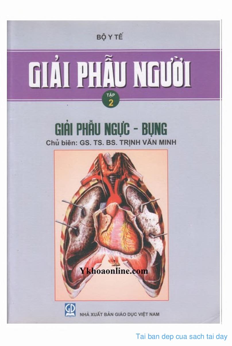 Giải phẫu người – GS. TS. Trịnh Văn Minh (Tập 2)