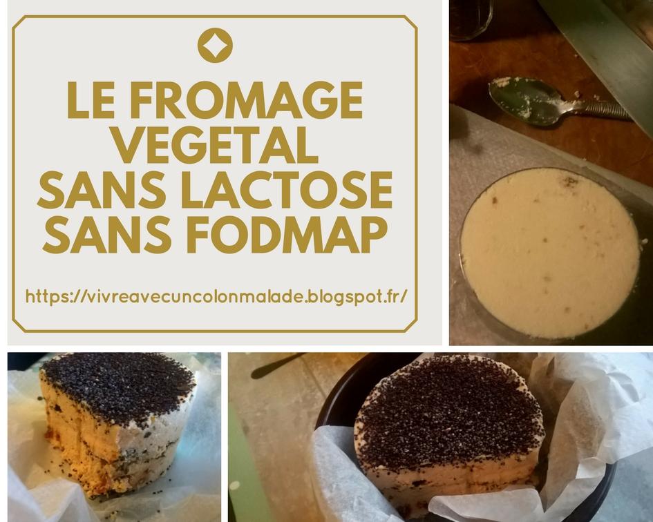 """fromage végétal sans lactose pauvre en FODMAP """"faux-mage"""""""