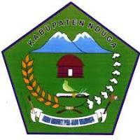 Penerimaan CPNS PEMKAB Kabupaten Nduga