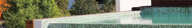 Detaliu proiect piscina si amenajare gradina