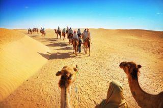 turismo internacional estadísticas