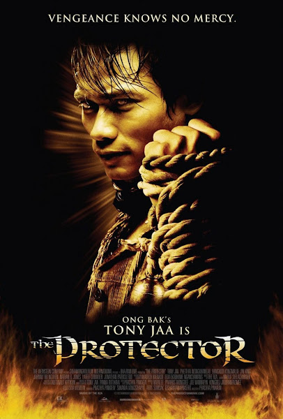 The Protector (2005) Full Movie Hindi Dubbed 300MB BluRay 480p ESubs