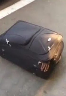 Man attempts to cross South African border inside luggage