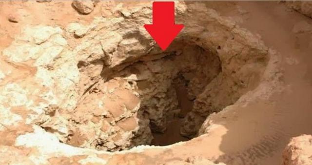Gempar! Penemuan Hutan Bawah Padang Pasir Di Maghribi Tanda Hari Kiamat Makin Dekat.. Lihat 2 Foto Selanjutnya, Makhluk Aneh Yang Menghuni Hutan Itu