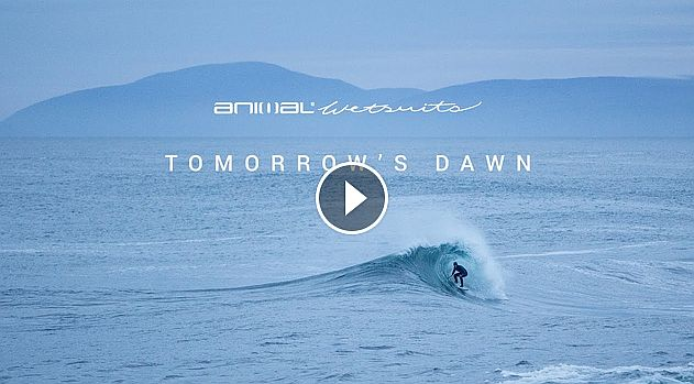 Tomorrow s Dawn with Alan Stokes Animal