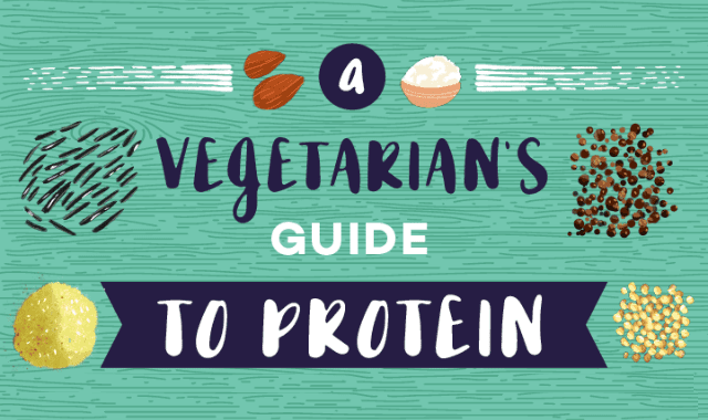 A Vegetarian's Guide to Protein