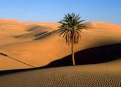 daftar nama gurun terluas, terbesar & terindah di dunia