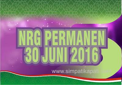 NRG Permanen