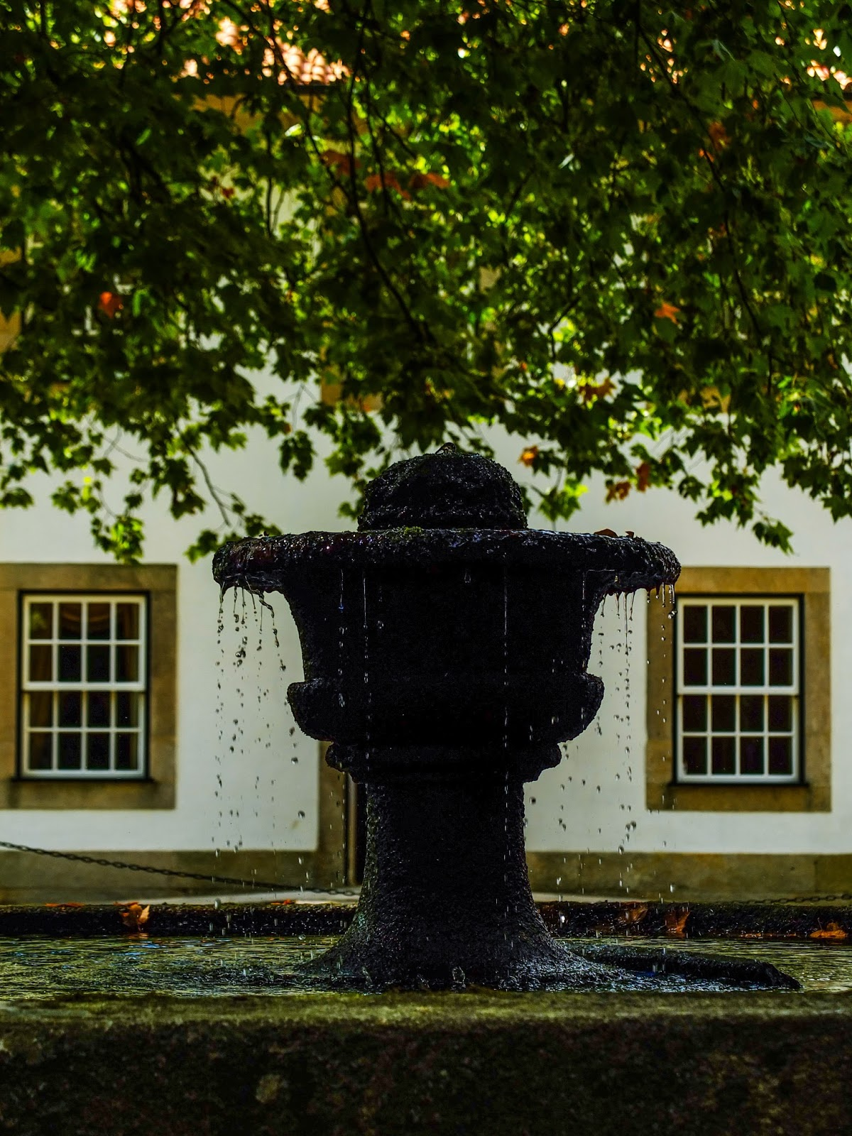 Stone fountain under a maple tree outside a white building with two sash windows in Porto, Portugal.