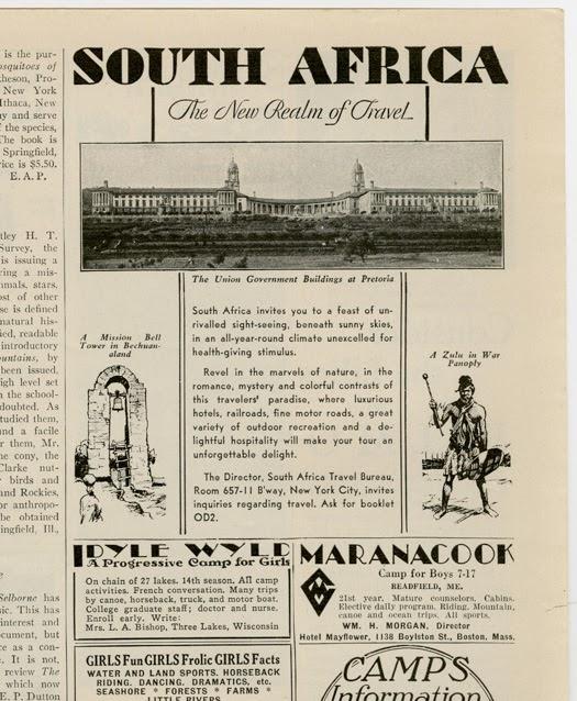 Essay shaka zulu
