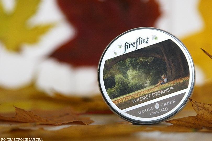 fireflies goose creek wildest dreams