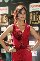 Videesha in Spicy Floor Length Red Sleeveless Gown at IIFA Utsavam Awards 2017  Day 2  Exclusive 16.JPG