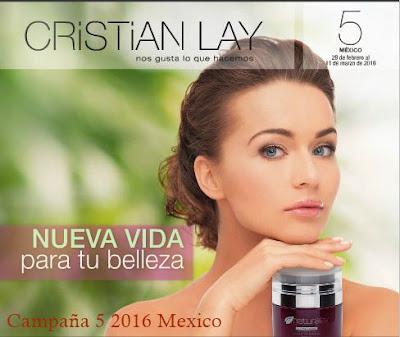 cristian lay campaña 5 2016