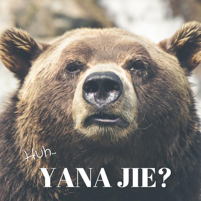 Siapa Pula Blogger Yana Jie ini?