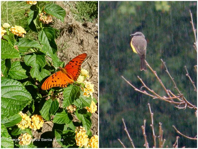 Día de sol y día de lluvia - Chacra Educativa Santa Lucía