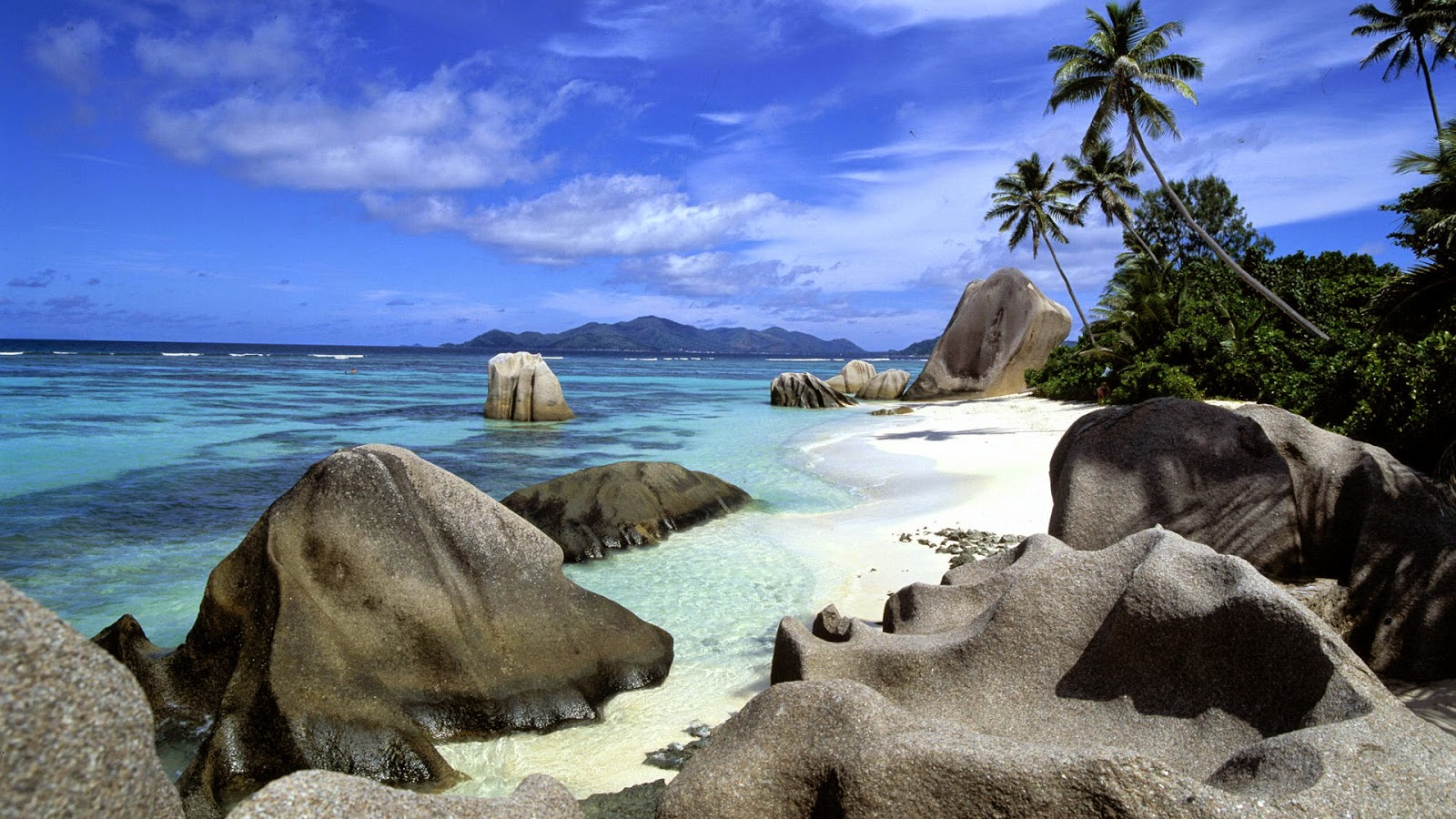 rocks-on-beach-sea-with-cocunut-tree-photo-image-free-download.jpg