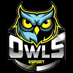 logo kepala burung hantu