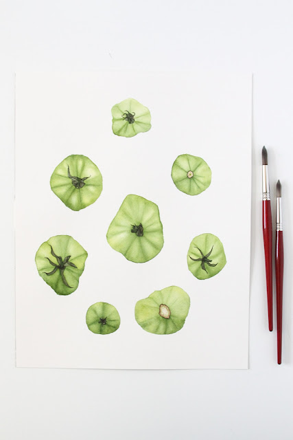 watercolors, watercolor tomato painting, green tomatoes, Anne Butera, My Giant Strawberry