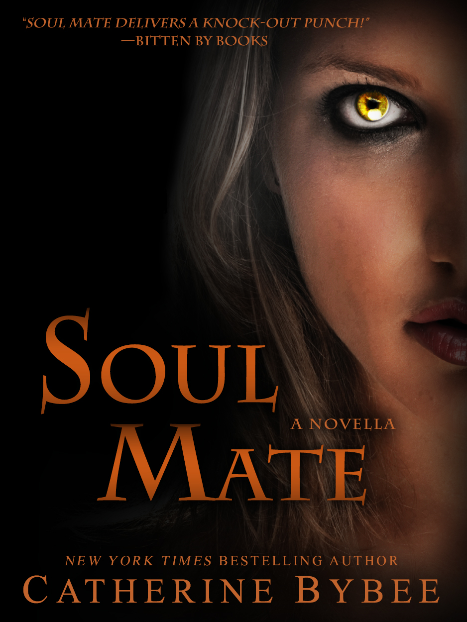 Romance By Catherine: Re-Vamping Soul Mate And Possessive