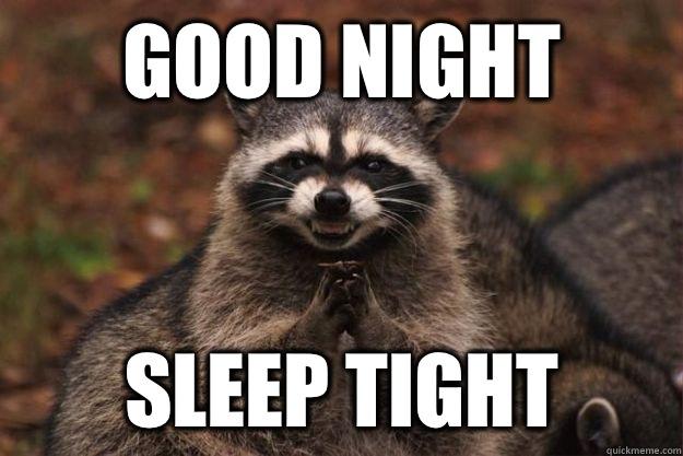 Good Night Sleep Tight Funny Raccoon Meme, Image