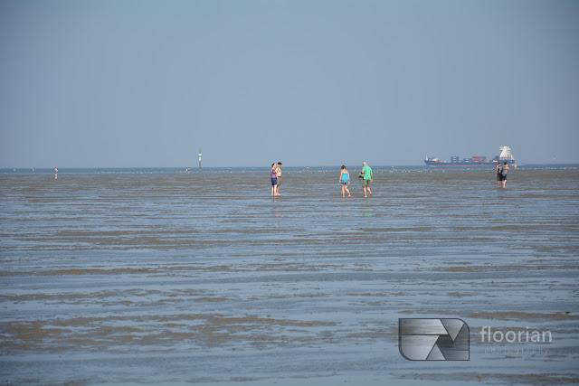 Morze Wattowe to największa atrakcja turystyczna Cuxhaven w Dolnej Saksonii