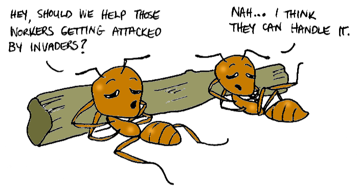 Learning Laziness from Ants