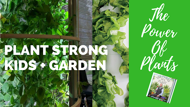 Plant Strong Kids I Paleo Vegeo Urban Gardening
