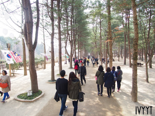 Korea Day 4: Nami Island + Cecica Hair!