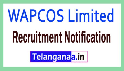 WAPCOS Limited Recruitment Notification