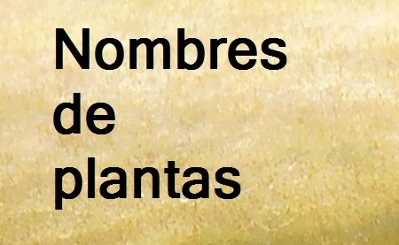 Nombre de plantas