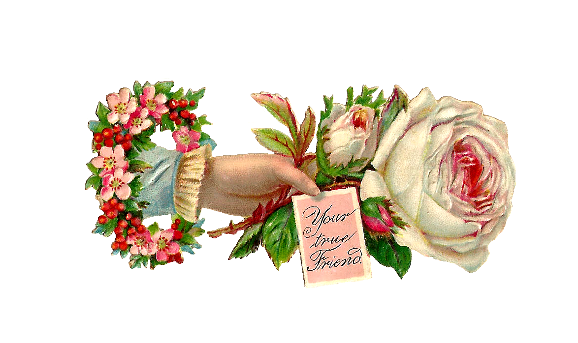 Antique Images: Free Rose Graphic: Antique White Rose Clip Art from Victorian Hand Whimsy