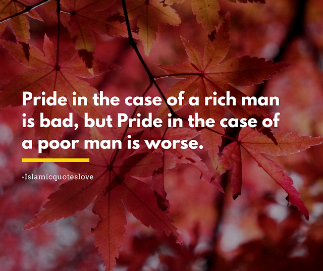 Pride in the case of a rich man is bad,  but pride in the case of a poor man is worse.  -Abu Bakr