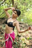Naveena   New South Indian Telugu Actress Spicy Pics ~  10.jpg