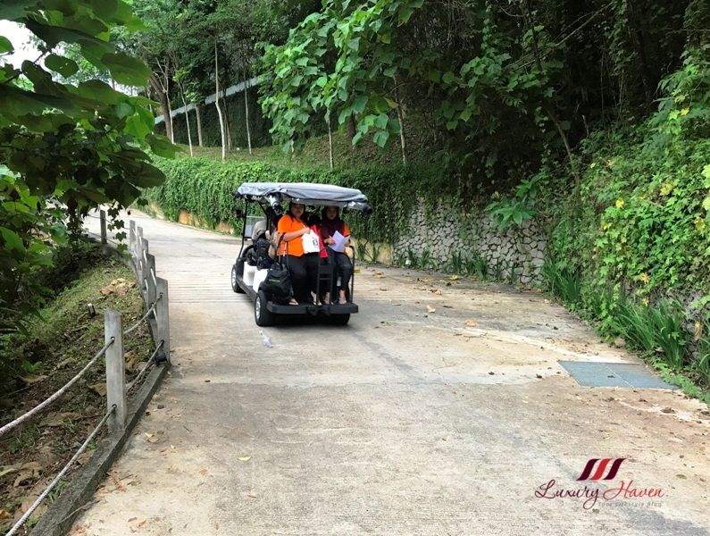 luxury royal belum rainforest resort buggy