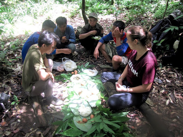 nam et phou louey national protected area hike lunch laos