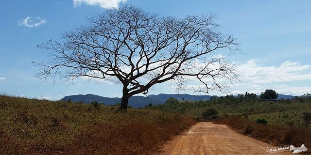 Estrada Real, Córregos e Santo Antônio do Norte, Caminho dos Diamantes, Minas Gerais,