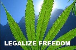 Congressman Steve Cohen Demands Obama Reschedule Marijuana