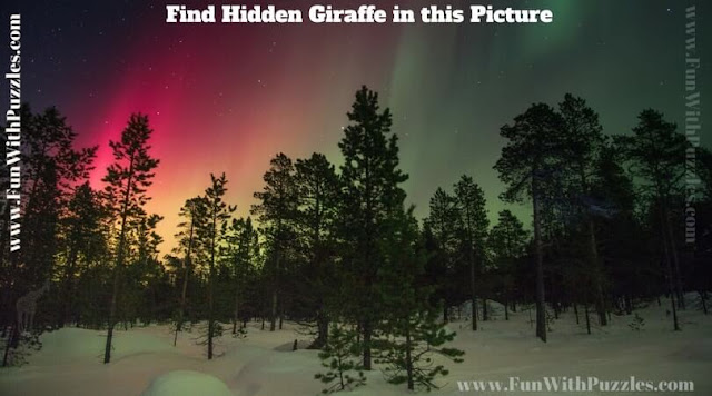 Picture Puzzle to find hidden Giraffe to test your observational power